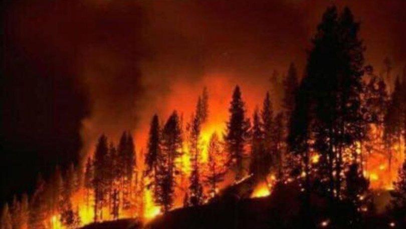 Yangın tehlikesi artıyor