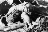 Ayvasıl katliamını unutmadık…  Rum katilleri açıklıyoruz